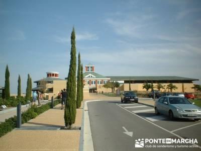 museo del vino de la dinastía Vivanco; rutas de senderismo por madrid